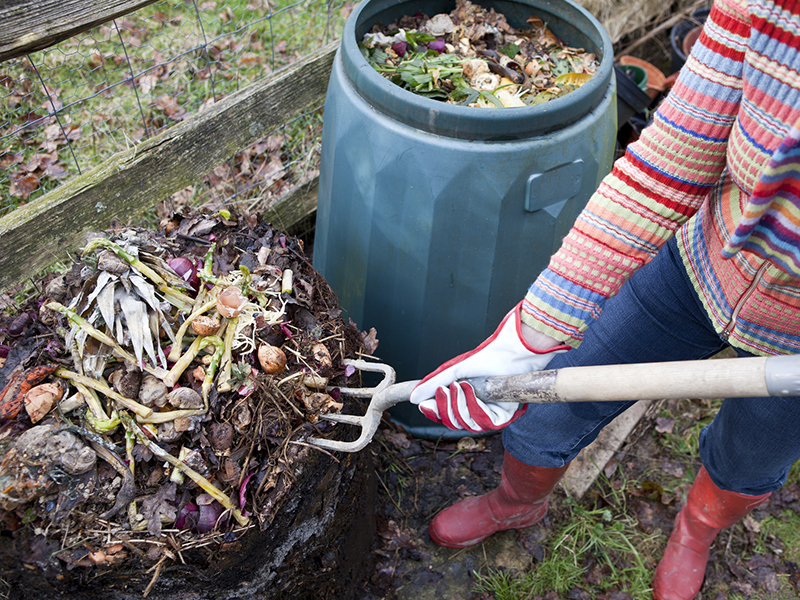 Compost and reduce food waste