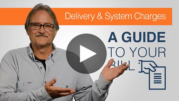 Delivery and System Charges