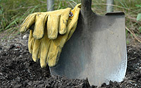 Ready to dig? Call 811 first.